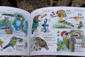 Fågelbok à la Taiwan